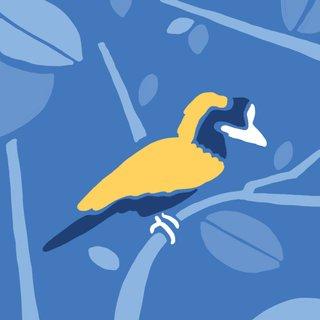 Punahnya Burung-Burung Indonesia